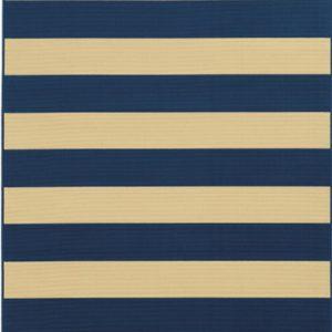 Rainbow Navy